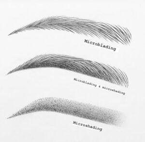 Eyewonderlust Powder Brows vs Microblading - Microblading vs Powder Brows Image Illustration